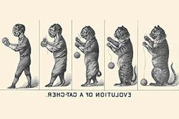 Evolution of a Cat-cher