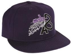 MiLB Minor League Salem Avalanche Batting Practice Baseball