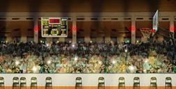 Photography Backdrop - Basketball Court - 20x10 Ft. Seamless