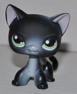Shorthair Kitten #336  - Littlest Pet Shop  Collector Toy -